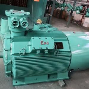 专业定制矿用防爆、 75KW防爆三相异步电机